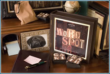 Bookshelf Edition - Wordspot by Front Porch Classics